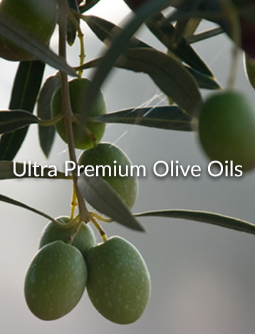 ultra premium olive oils